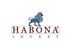 Fits in 160x50 habona invest logo