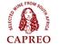 Fits in 160x50 capreo logo claim rgb anschnitt